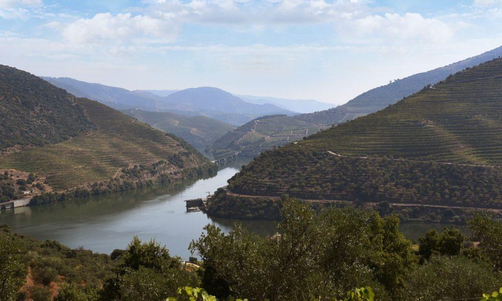 Linha do Douro, paisagem do douro vinhateiro