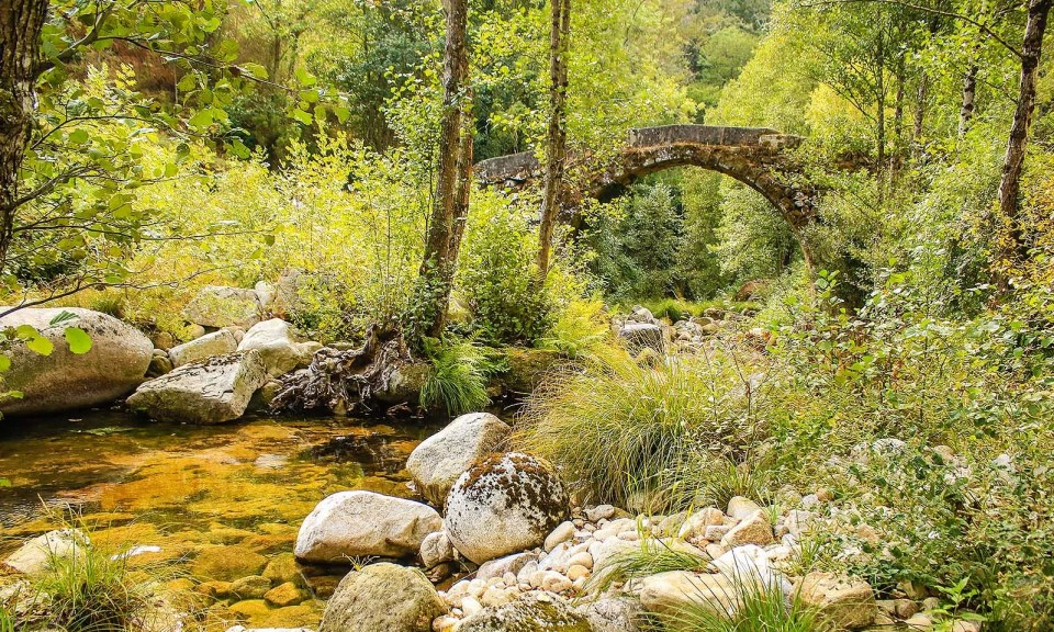 Ponte de Soutelo, Cinfães do Douro EN222 - Rota do Douro