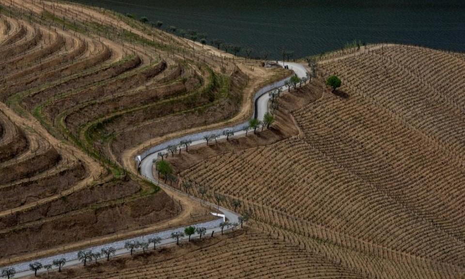 De Vila Nova de Gaia a Almendra pela N222 - Rota do Douro