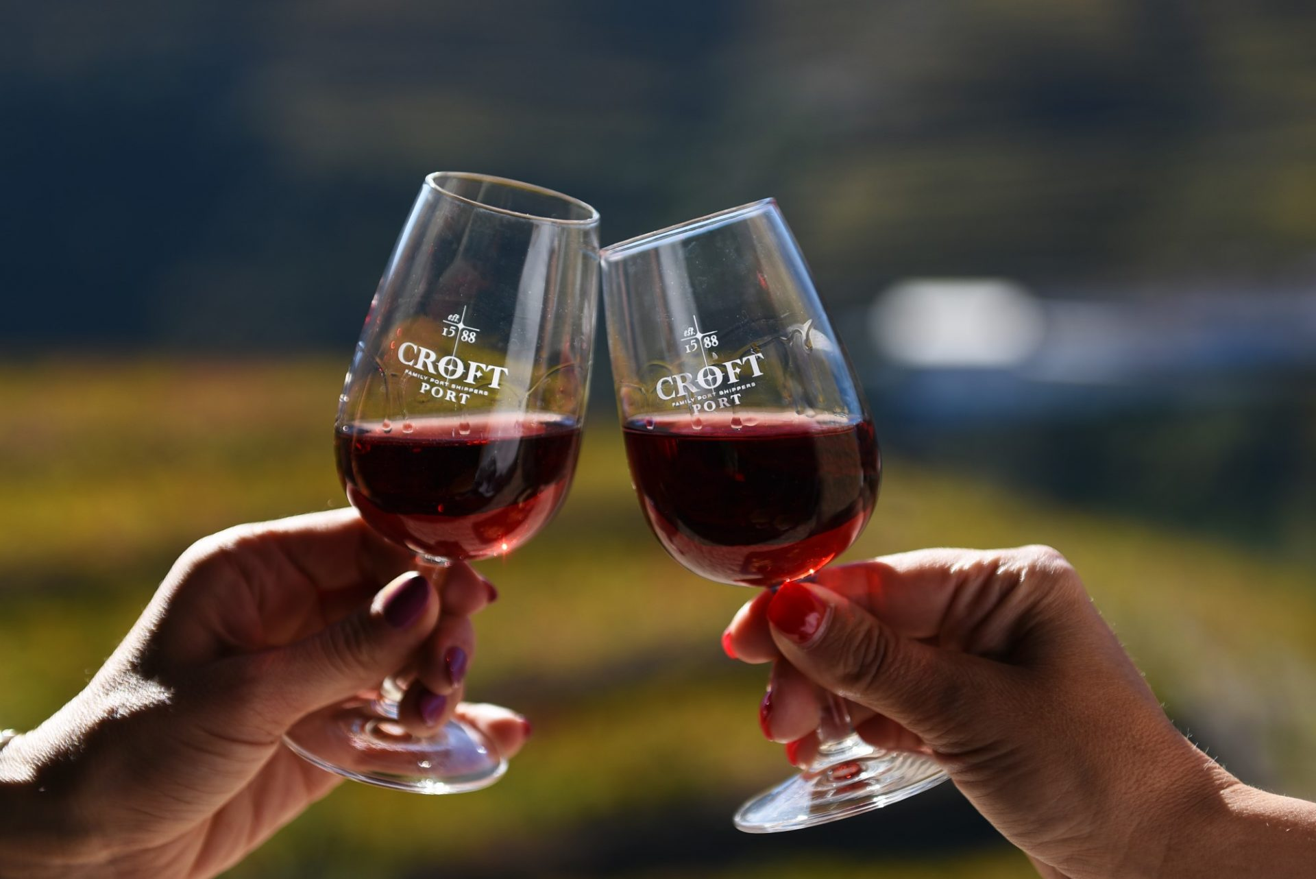 Conheça os diferentes tipos de Vinho do Porto / Discover the different types of Port Wine - Rota do Douro