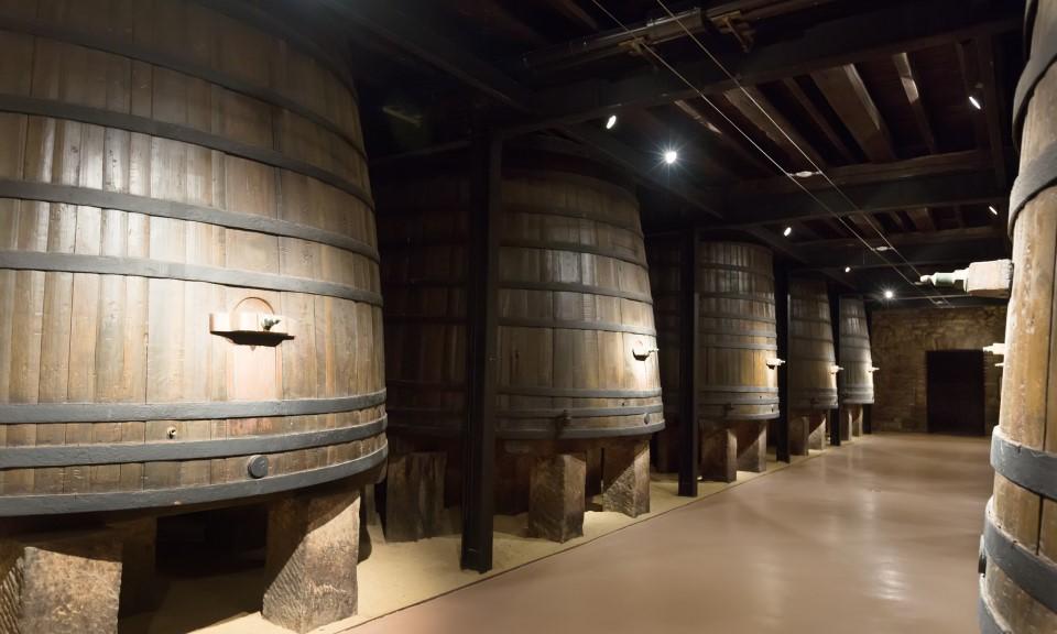 Atividades para fazer no porto - visitar as caves do vinho do Porto - Rota do Douro